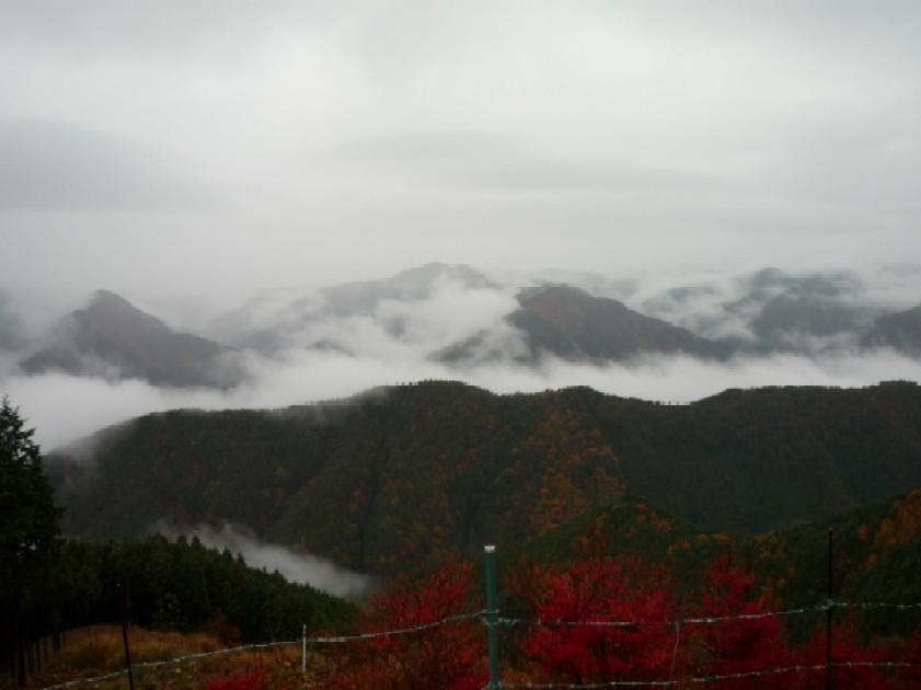 龍神スカイライン護摩壇山