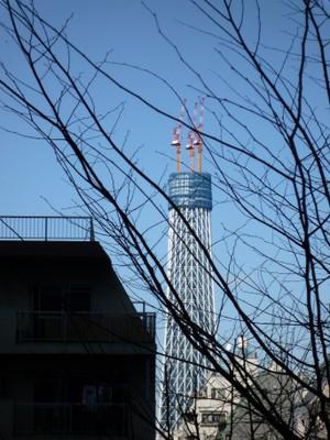 20100207sumida1