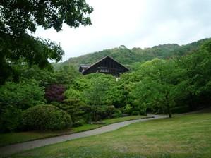 20100523oyamazakisanso4