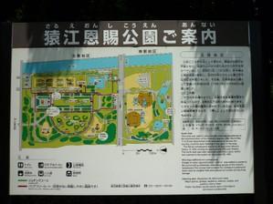 20100710tiara3