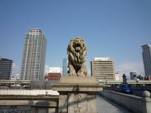 20110109toyotoji5