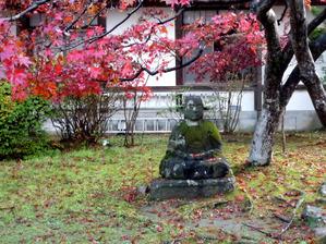 20111120nikkokanaya7