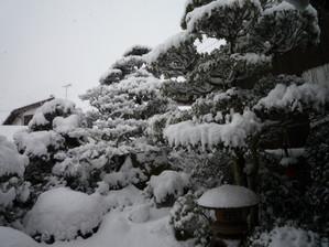 201202hoji3